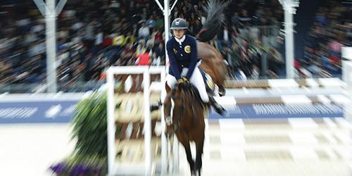 Selon l'Association de l'équitation chinoise, le nombre total de clubs équestres en Chine est passé de 300 à 1 452 après les Jeux Olympiques de 2008.
