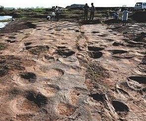 Des nouveaux éléments sur le Jurassique : 300 empreintes de dinosaures découvertes dans le Shandong