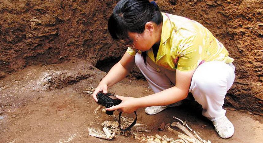 Des fragments de crane de gibbon découverts en Chine dans une tombe datant d'il y a 2 300 ans pourraient fournir une des premières preuves du r?le joué par l'Homme dans l'extinction de cette espèce.