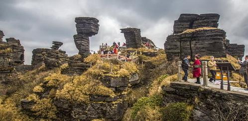 Le mont Fanjingshan, habitat naturel d'un certain nombre de plantes et d'animaux rares de la province du Guizhou, vient d'être classé au patrimoine mondial de l'UNESCO.