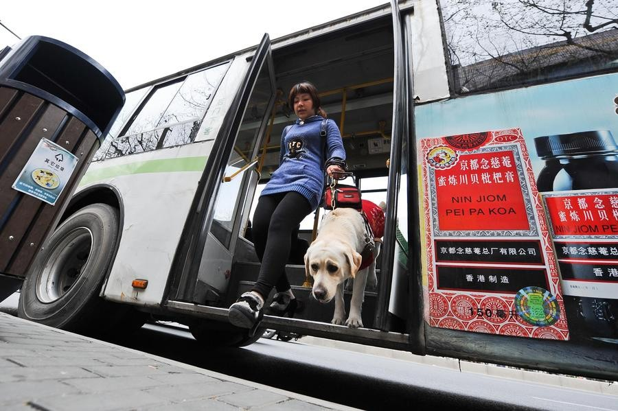 Chen Xin descend d'un bus avec l'aide de son chien-guide, le 1er avril à Shanghai. [Photo / Xinhua]